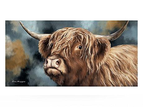 Highland Heifer